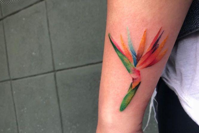 tatuajes acuarela mujer flor de loto