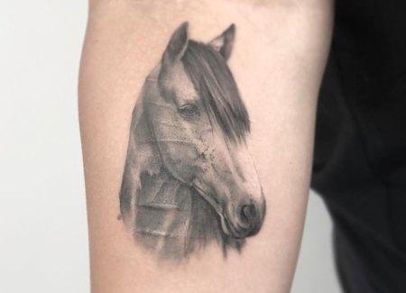 tatuaje animal caballo