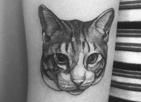 tatuaje animal gato