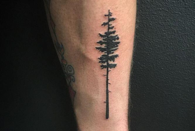 tatuaje arbol abeto