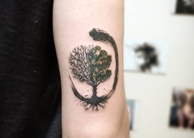 tatuaje circulo zen arbol