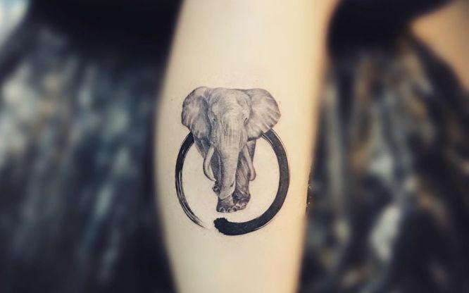 tatuaje circulo zen elefante