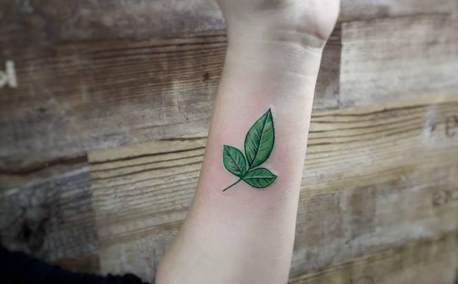 tatuaje pequeño mujer hojas