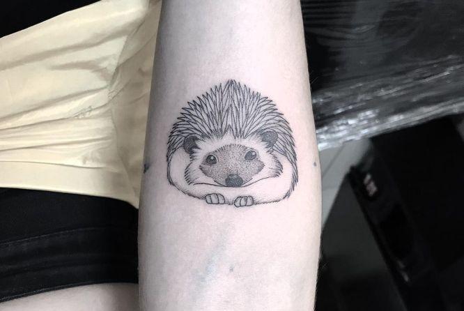 tatuajes originales Puercoespin
