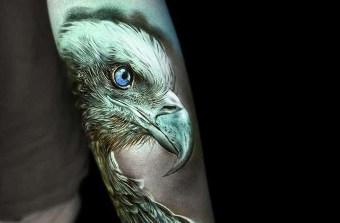tatuajes aguila realista