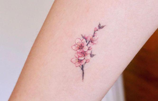 tatuajes de flores Flor de cerezo