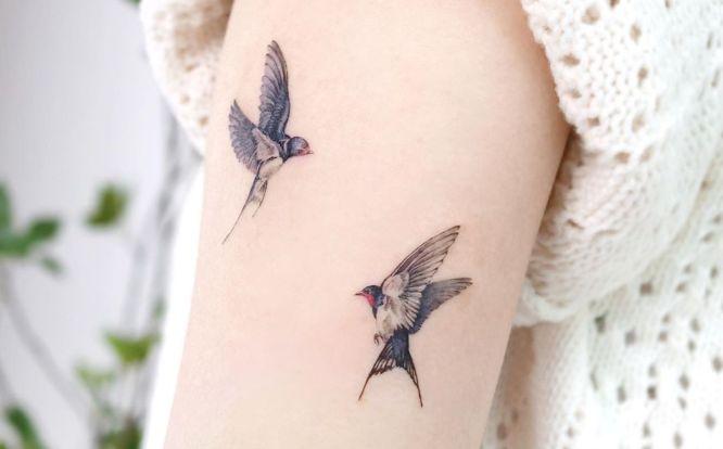 tatuajes golondrinas pequeñas