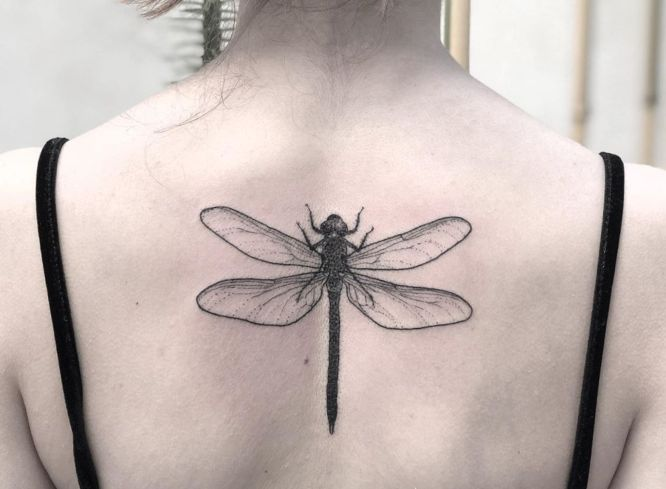 tatuajes libelula espalda