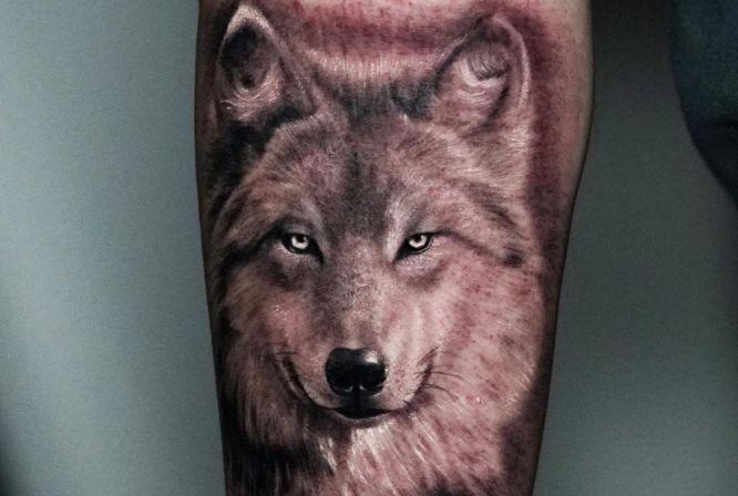 tatuajes lobos realistas brazo