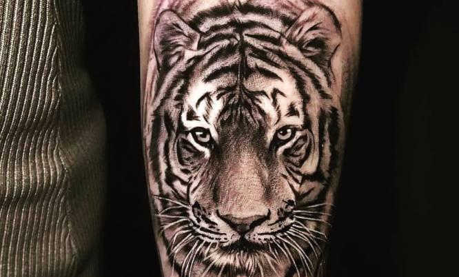 tatuajes tigre realista brazo