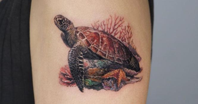 tatuajes tortugas brazo